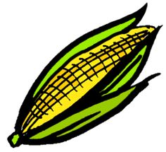 Corn On The Cob Clip Art-Corn on the Cob Clip Art-14