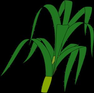 Corn Stalk Clip Art - Corn Stalk Clip Art