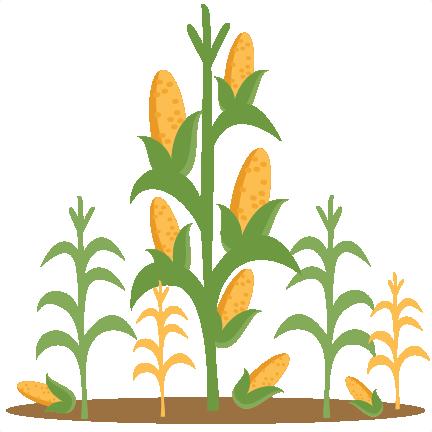 Corn Stalks SVG scrapbook cut .