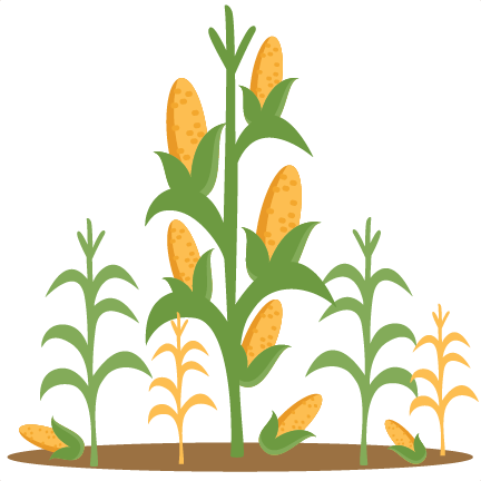 Corn Stalks SVG scrapbook cut .