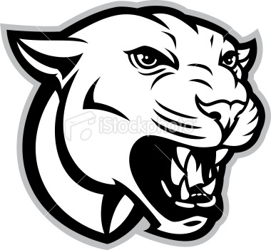 Cougar-cougar-8