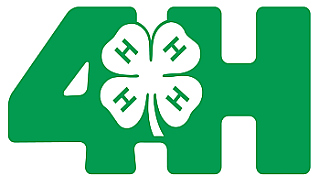 County 4 H Clip Art - 4 H Clipart