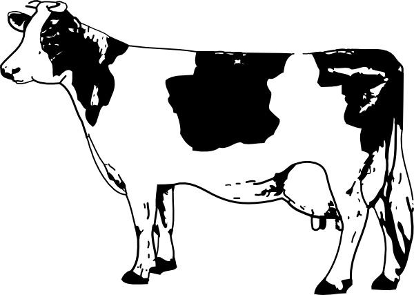 Cow clip art Free vector 102.40KB