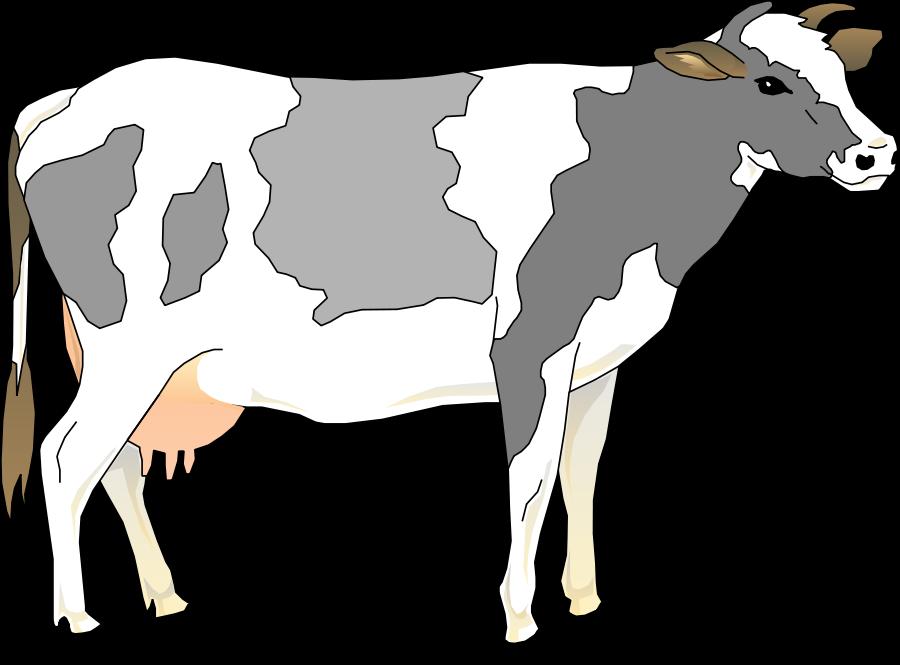 Cow clipart, Cow clip art .