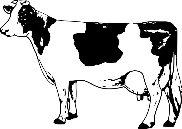 Cow Drawing Clip Art At Clker Com Vector Clip Art Online Royalty
