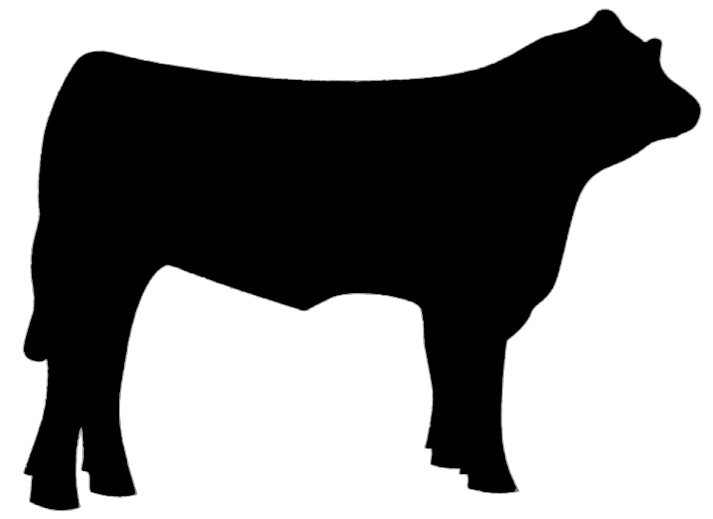 Cow Silhouette Clip Art. 9d62175f8c073d6-cow silhouette clip art. 9d62175f8c073d673784d0164da02a .-9