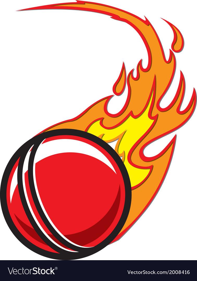 Flaming Cricket Ball vector image