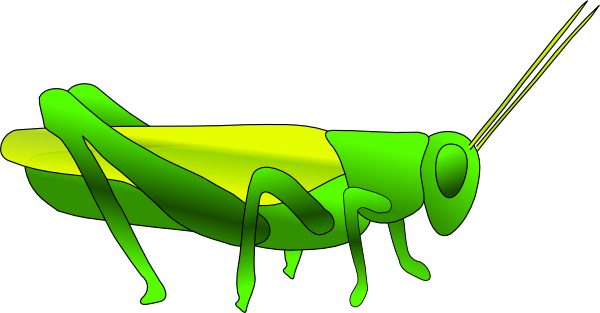 Cricket Insect Clipart Clipart Best