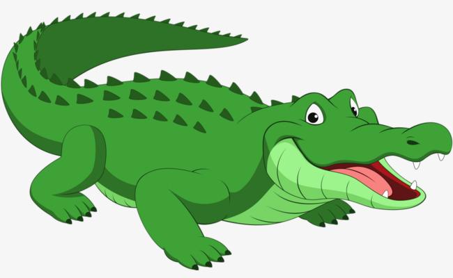 Green Crocodile, Crocodile Clipart, Gree-green crocodile, Crocodile Clipart, Green Crocodile Leather, Crocodile PNG  Image and Clipart-15