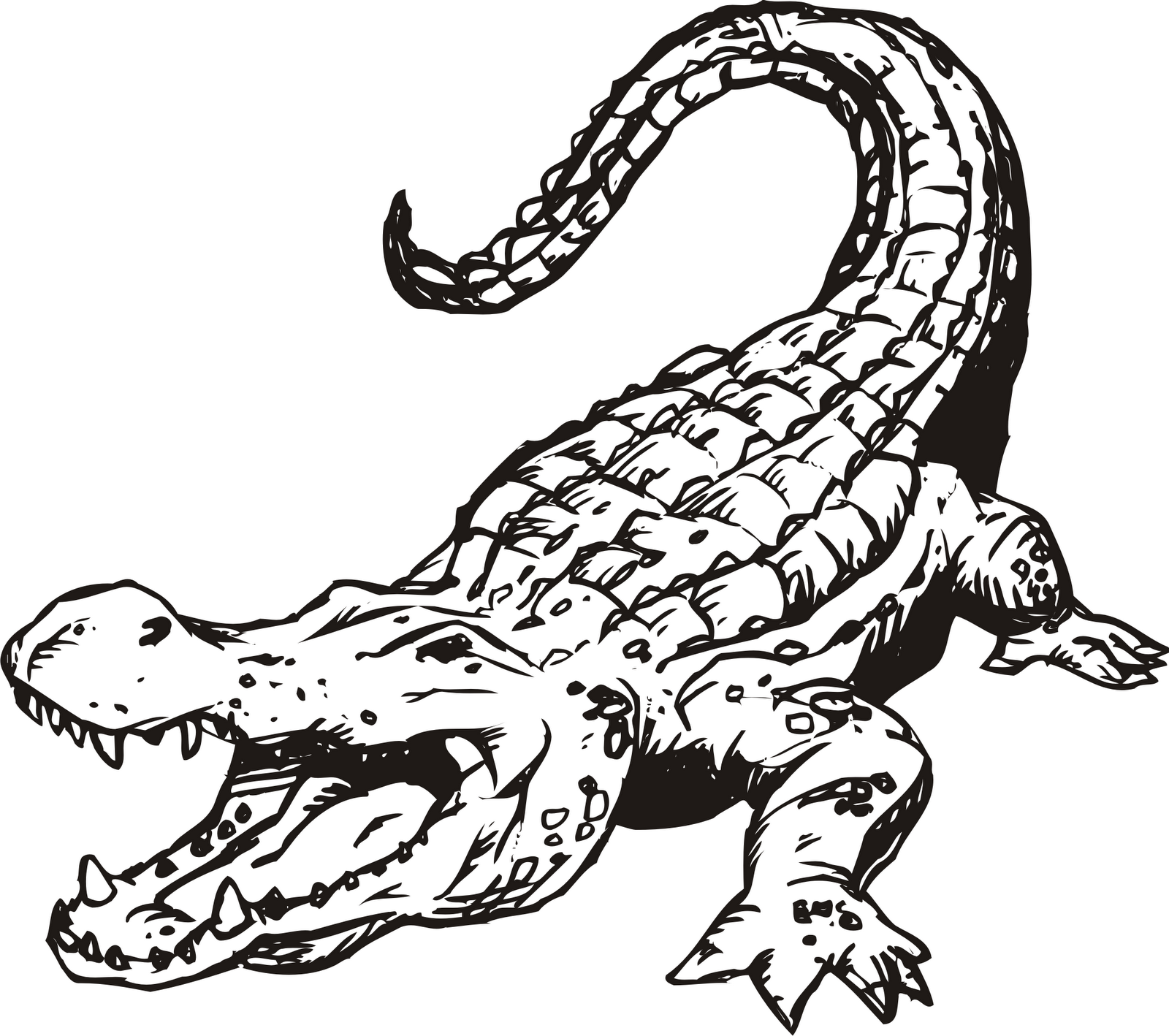 Crocodile free alligator clipart clip ar-Crocodile free alligator clipart clip art pictures graphics - Clipartix-17