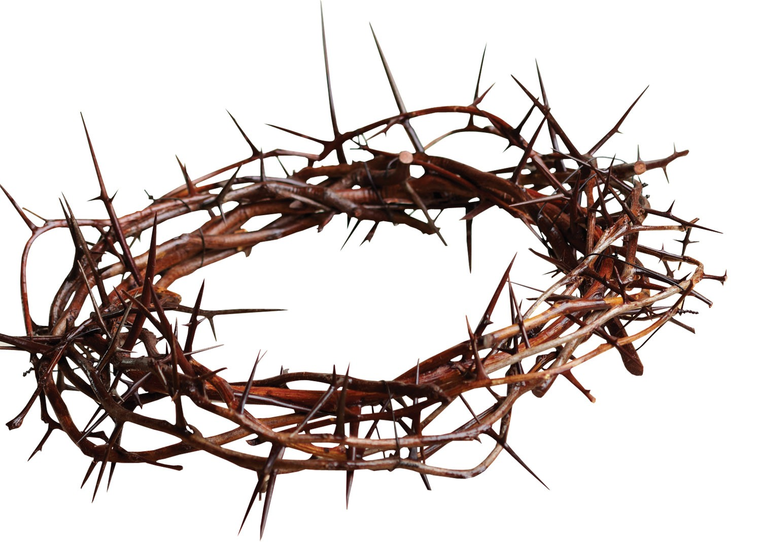 Crown Of Thorns Clip Art Clipart Best-Crown Of Thorns Clip Art Clipart Best-0