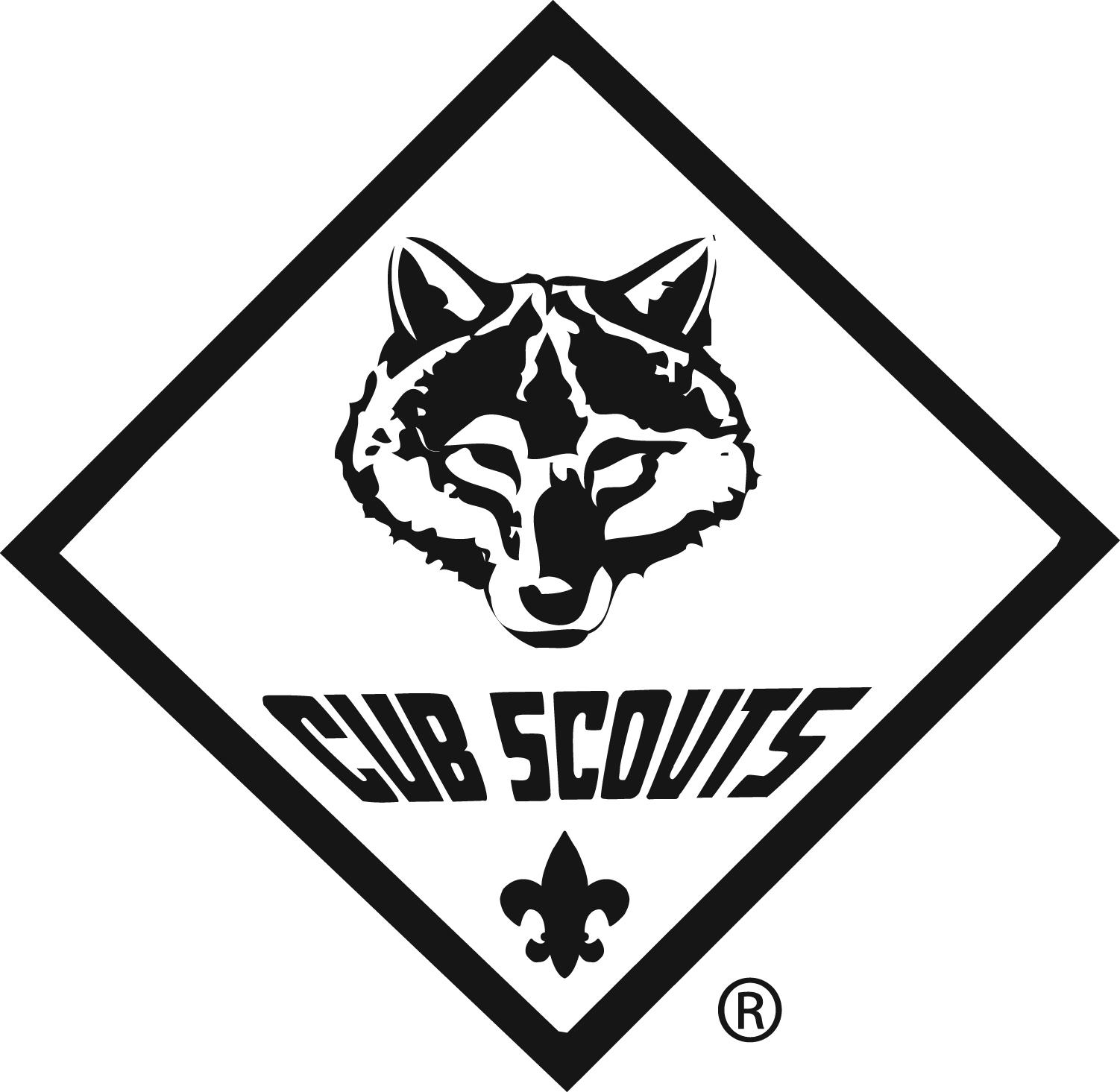 Cub Scouting-Cub Scouting-17