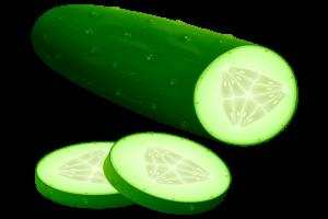 cucumber clipart-cucumber clipart-10