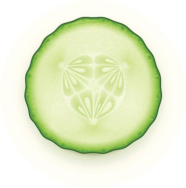 Cucumber slice vector art illustration