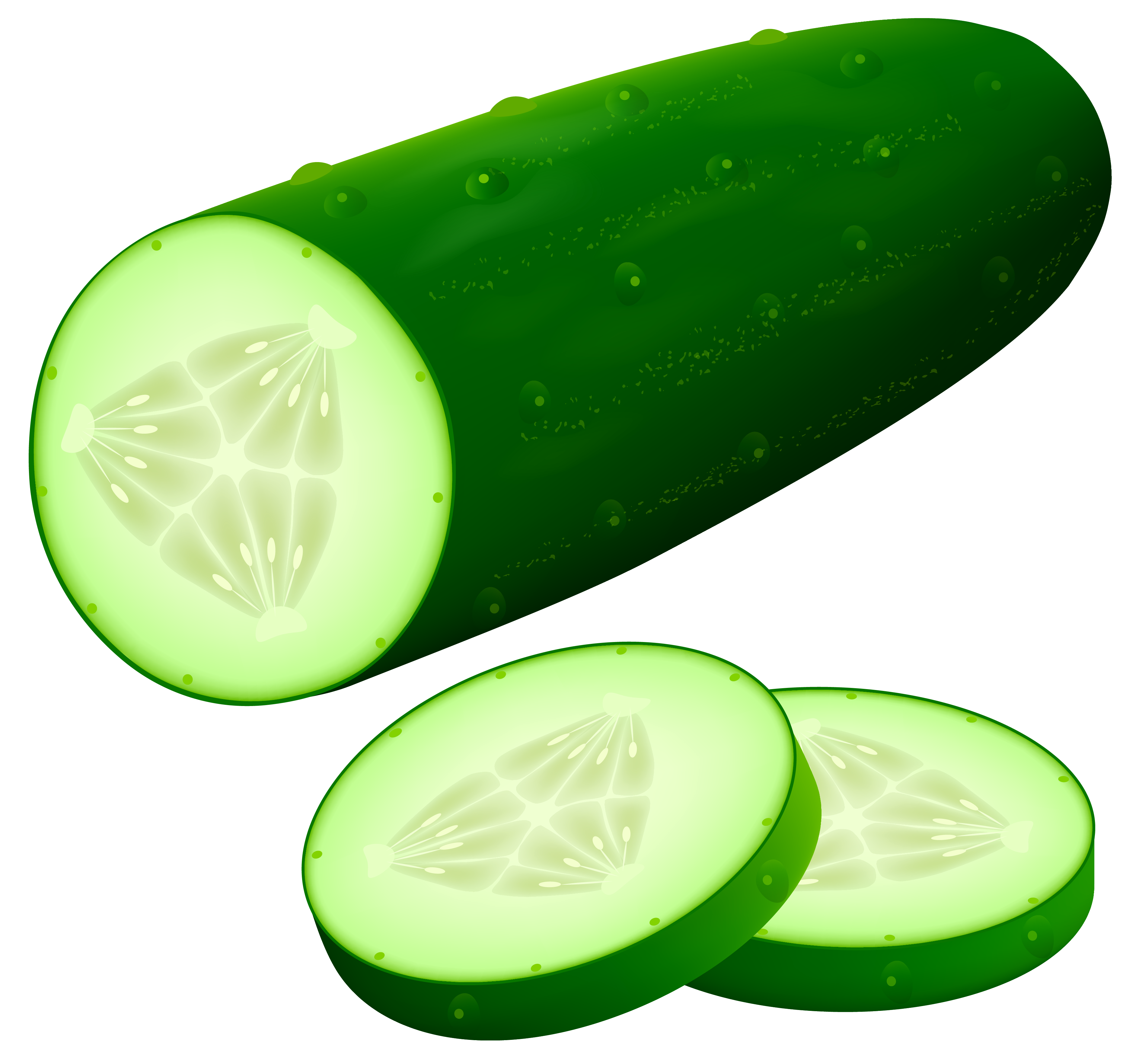 Cucumber clipart image web