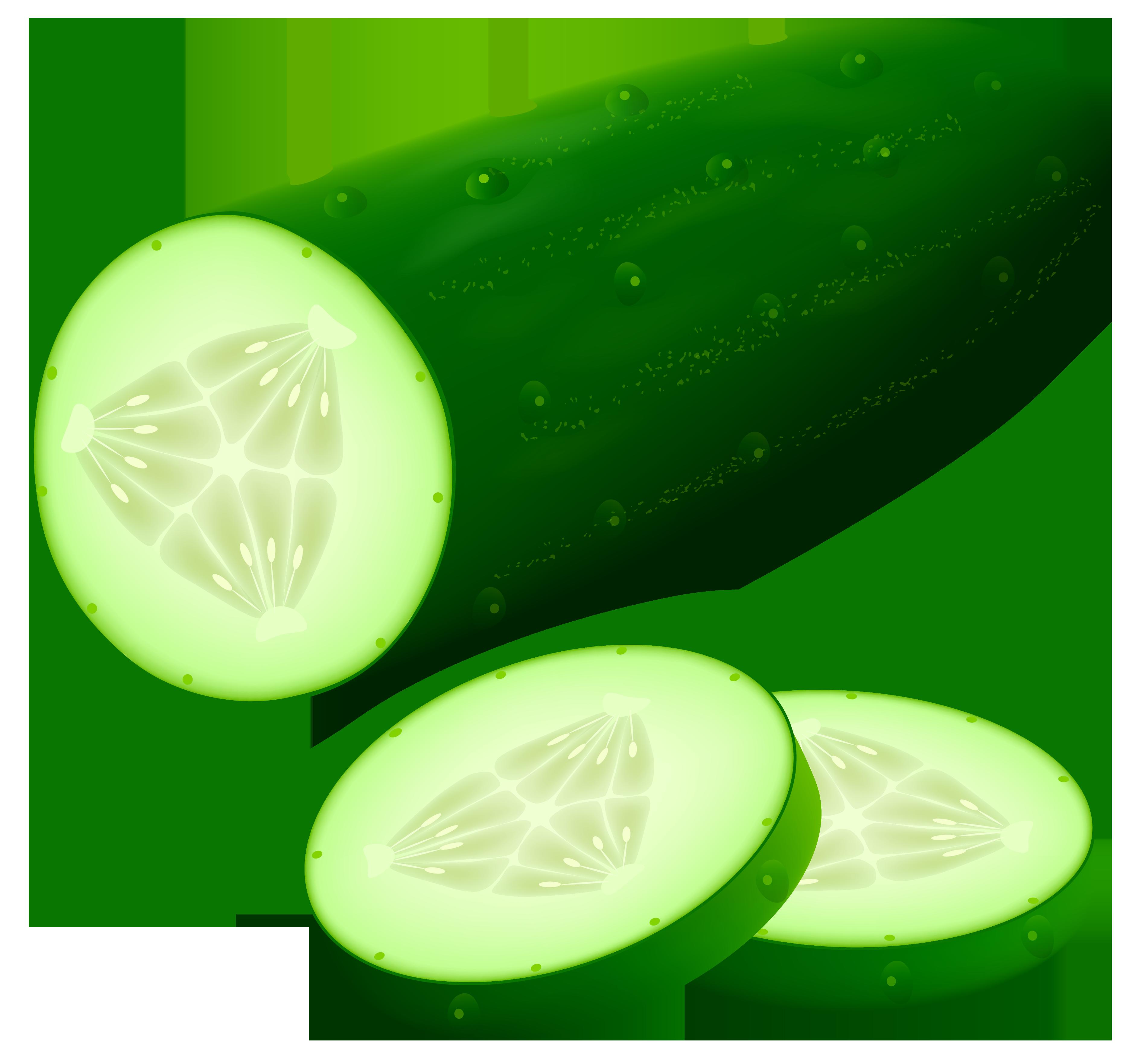 Cucumber clipart image web