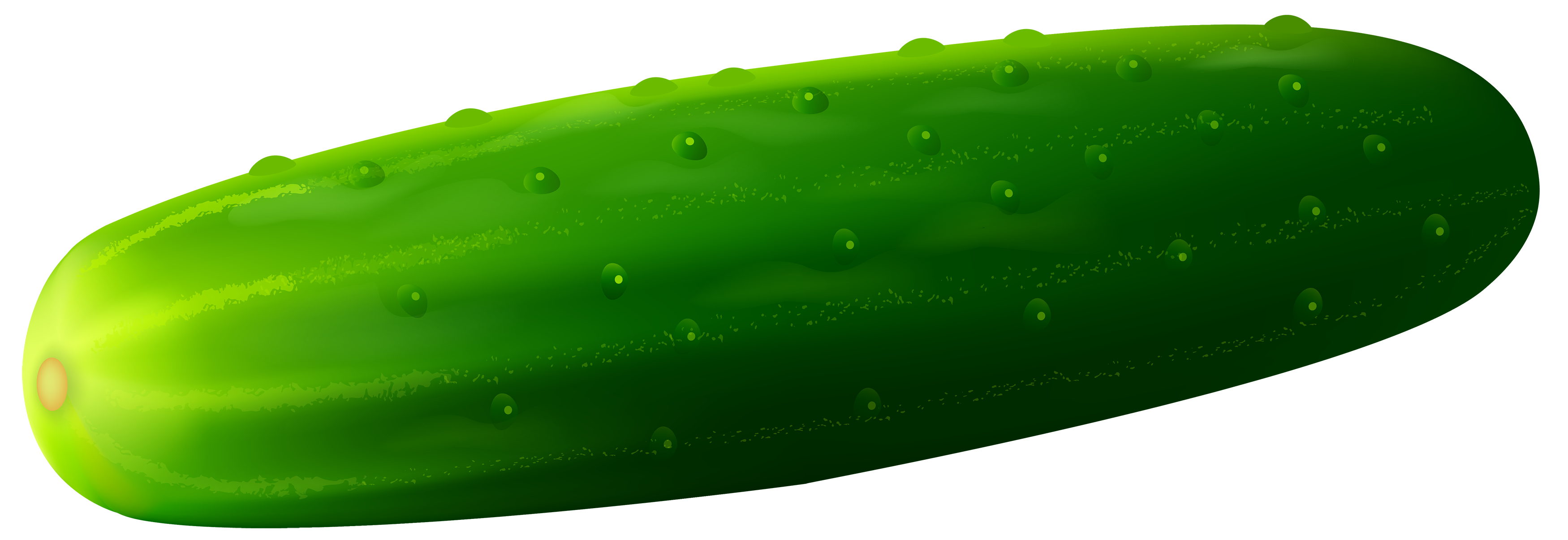 Cucumber clipart image web. Cucumber PNG image free download