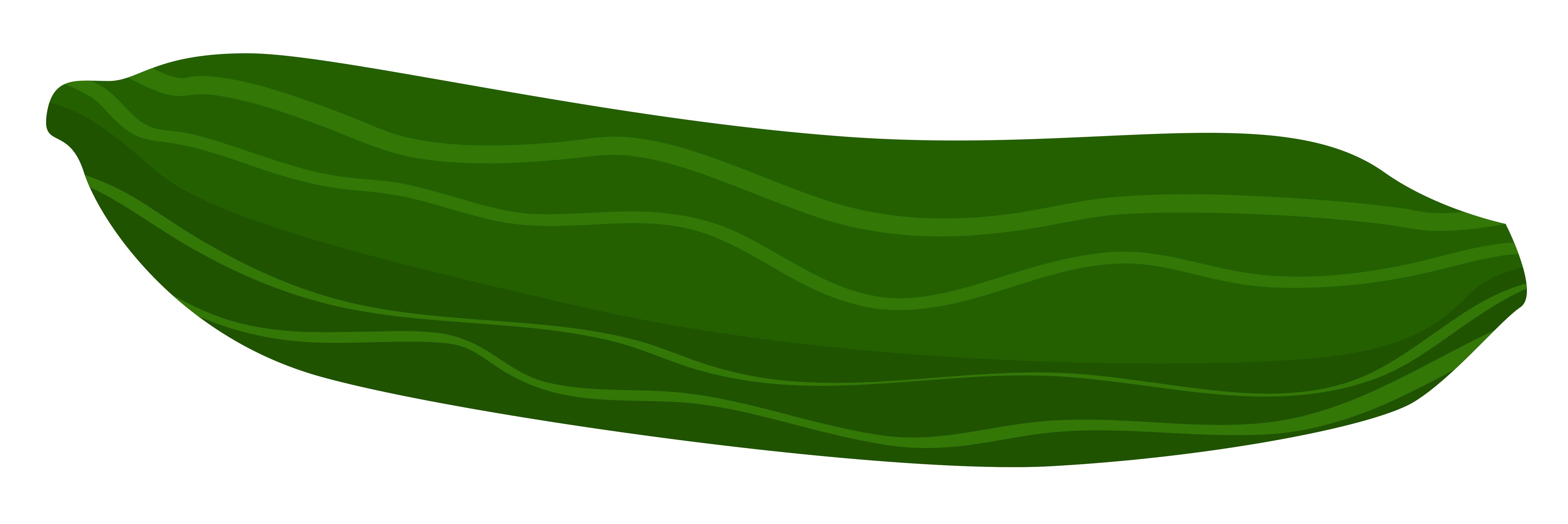 Cucumber clipart kiaavto image