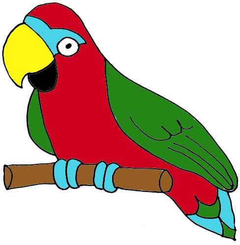 cute parrot clipart