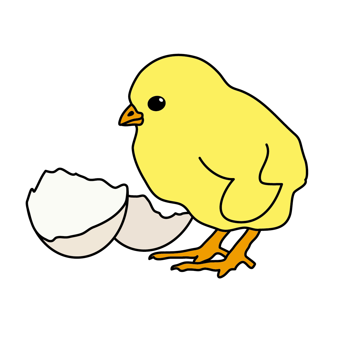 Cute Baby Chicken Clipart Clipart Panda Free Clipart Images