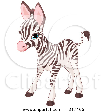 Cute Baby Zebra Standing by Pushkin