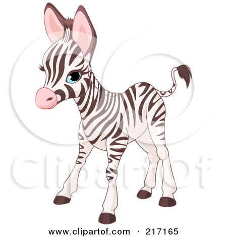 Cute Baby Zebra Standing By Pushkin-Cute Baby Zebra Standing by Pushkin-11
