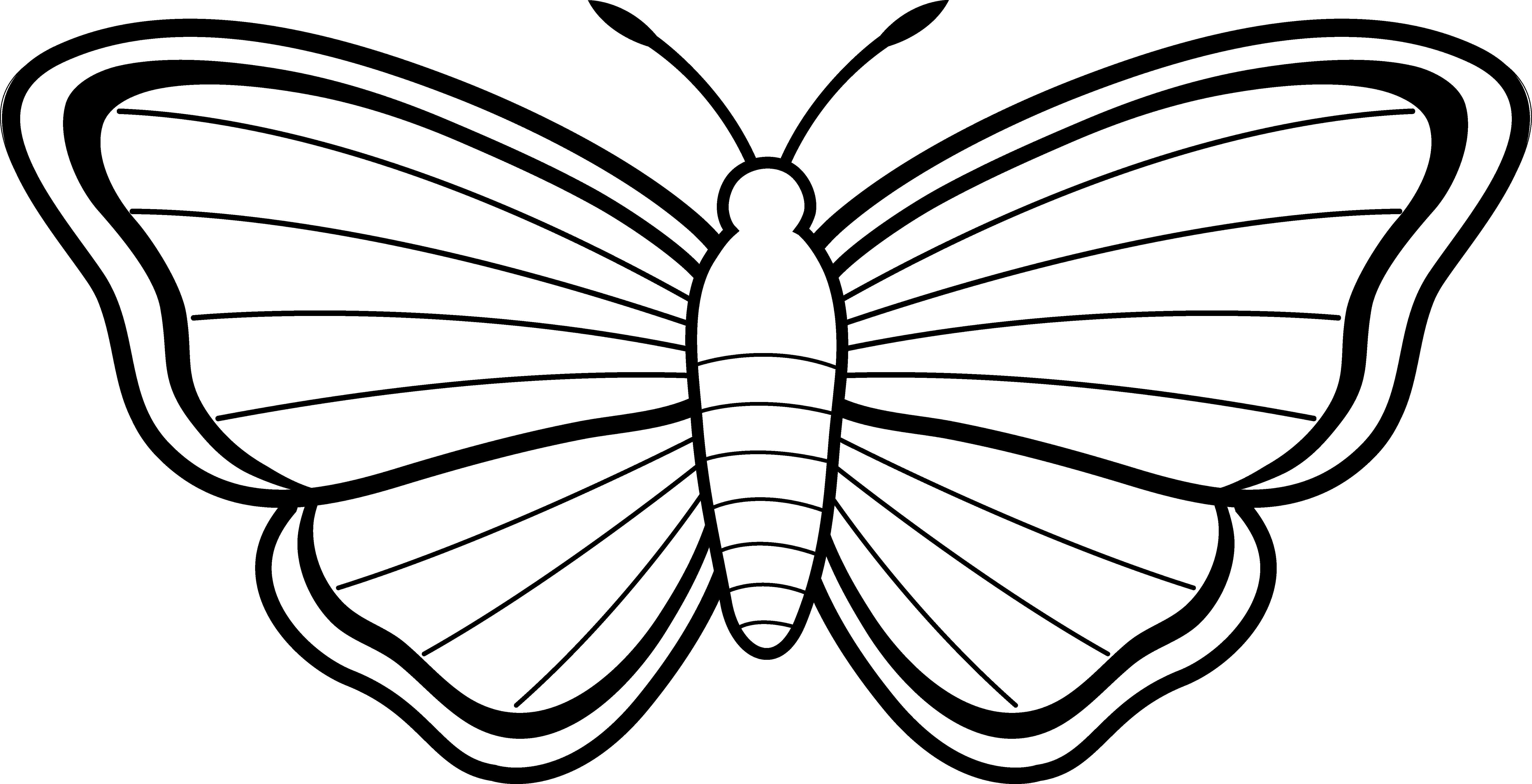 ... Cute Butterfly Line Drawing   Free D-... Cute Butterfly Line Drawing   Free Download Clip Art   Free Clip .-5