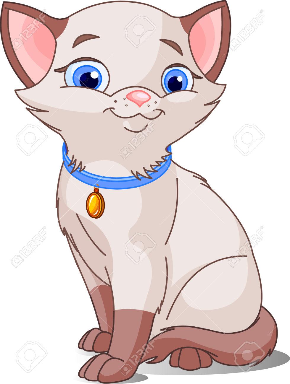 Cute Cat, pointed siamese.