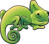 ... cute chameleon ...