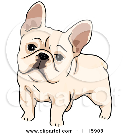 Cute French Bulldog by BNP Design Studio-Cute French Bulldog by BNP Design Studio-11
