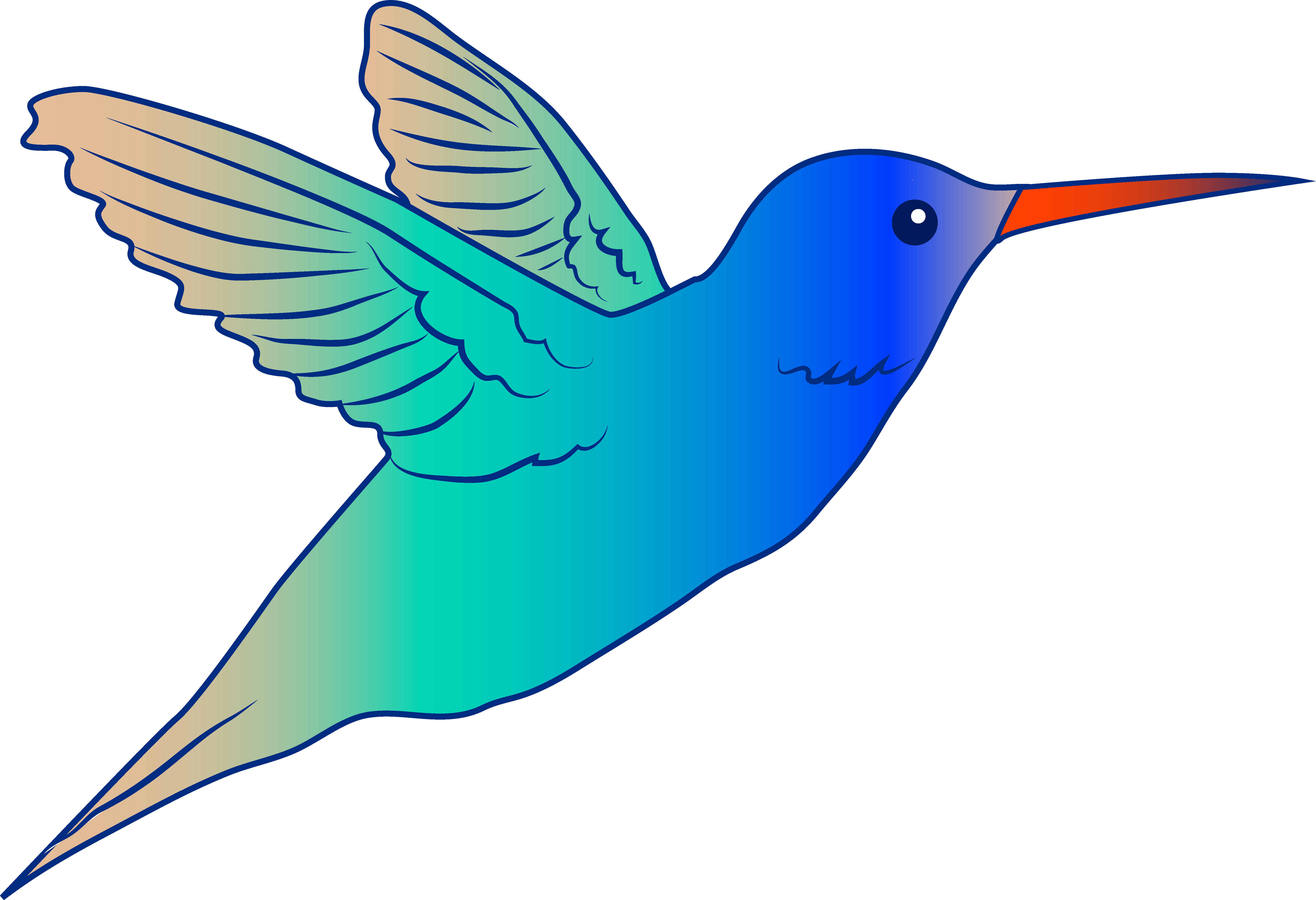 Cute Hummingbird Illustration - Free Clip Art