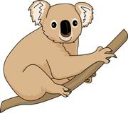 cute koala. Size: 49 Kb
