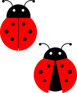 Cute Ladybug Drawings Clipart Panda Free Clipart Images