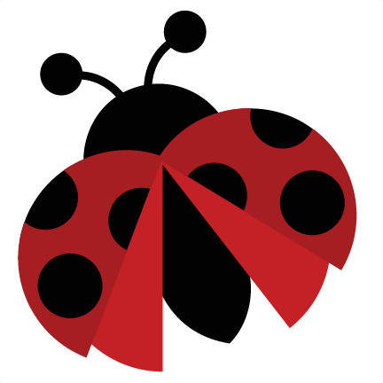 Cute Ladybug Pictures Clipart Best