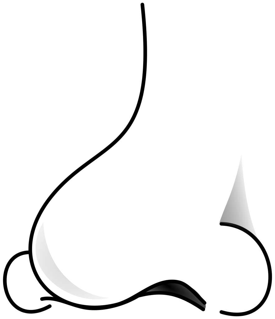 Cute Nose Clipart-Cute Nose Clipart-5