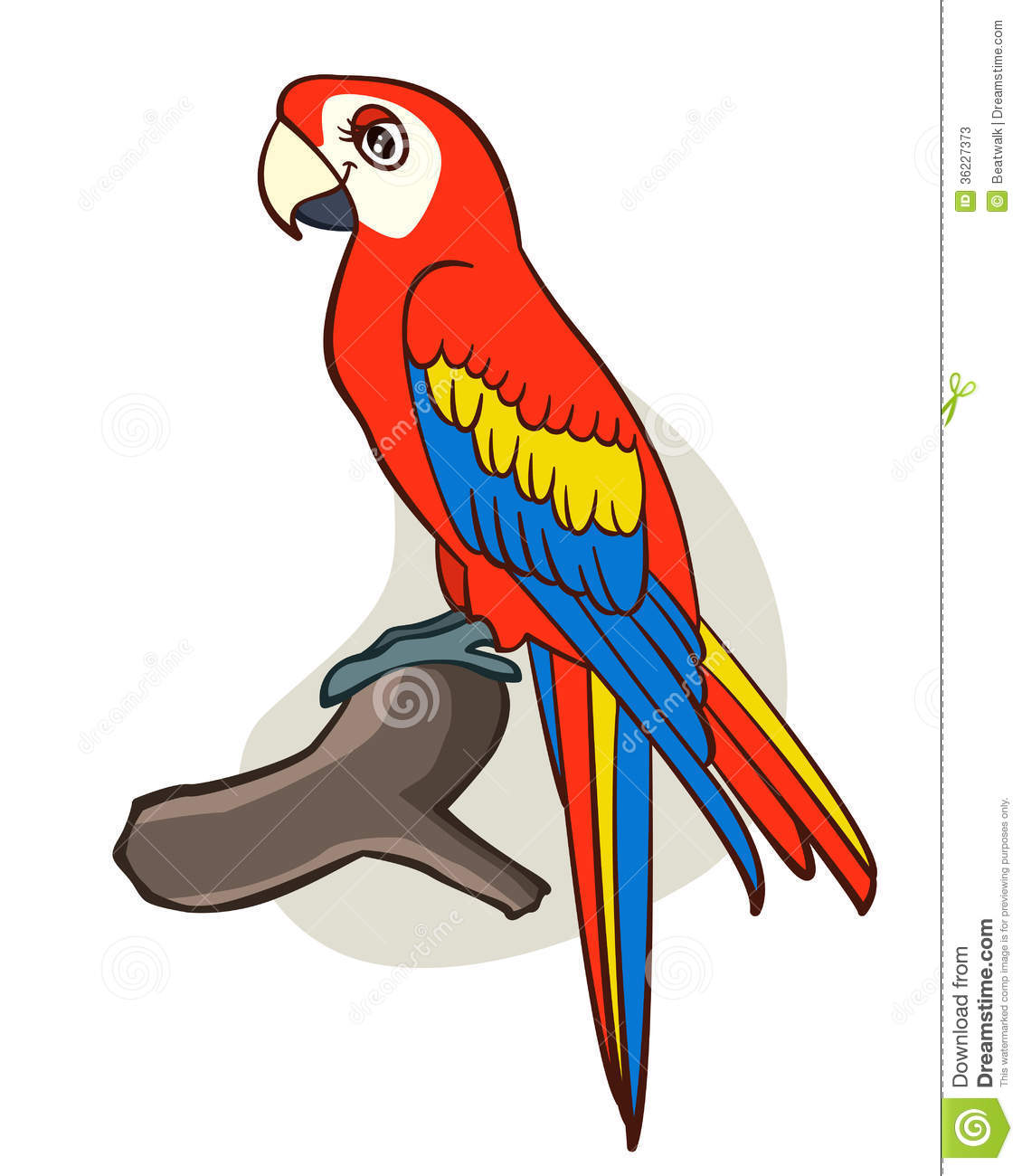 Cute Parrot Clipart Cartoon Parrot Cute Isolated White Background