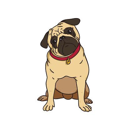 cute puppy pug vector art .-cute puppy pug vector art .-17
