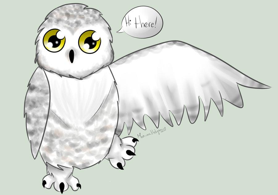 Cute Snowy Owl By .-Cute Snowy Owl By .-4