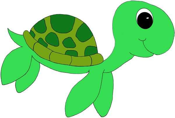 Cute turtle clipart classroom theme ideas