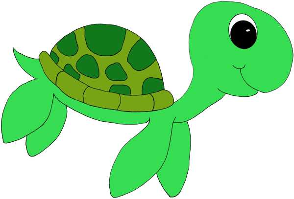 Cute turtle clipart - .