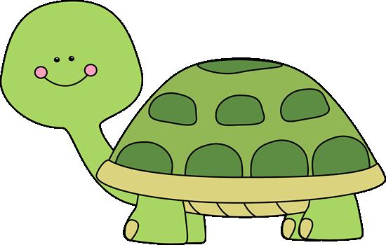 Cute Turtle-Cute Turtle-1
