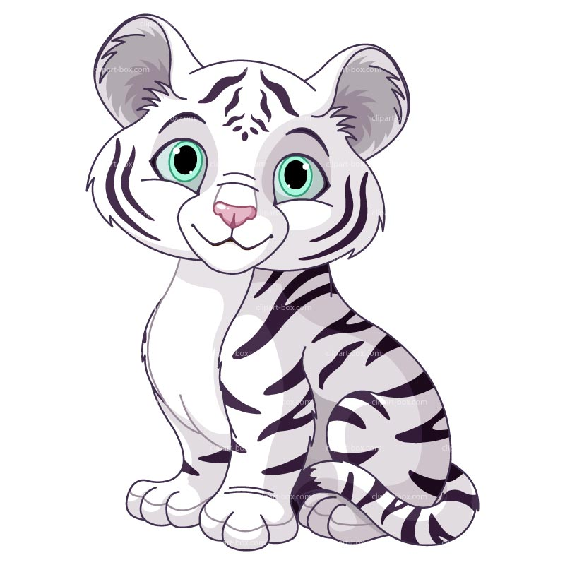 Cute White Tiger Clipart. 1000  images about tiger on .