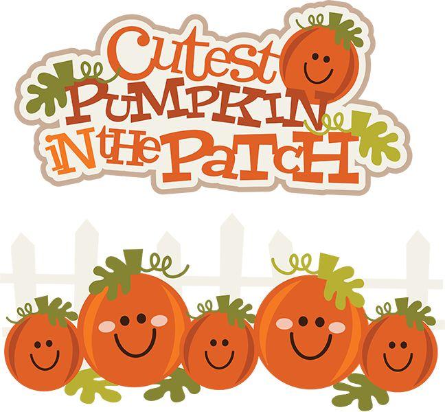 Cutest pumpkin in the patch .-Cutest pumpkin in the patch .-5