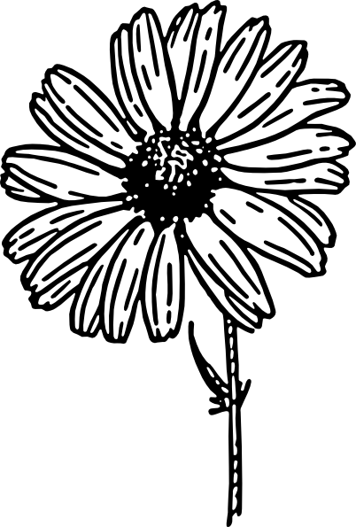 Daisy Black And White Clip Art At Clker -Daisy Black And White Clip Art At Clker Com Vector Clip Art Online-3