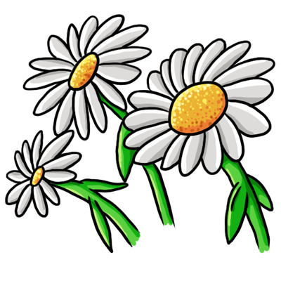 Daisy clipart-Daisy clipart-2