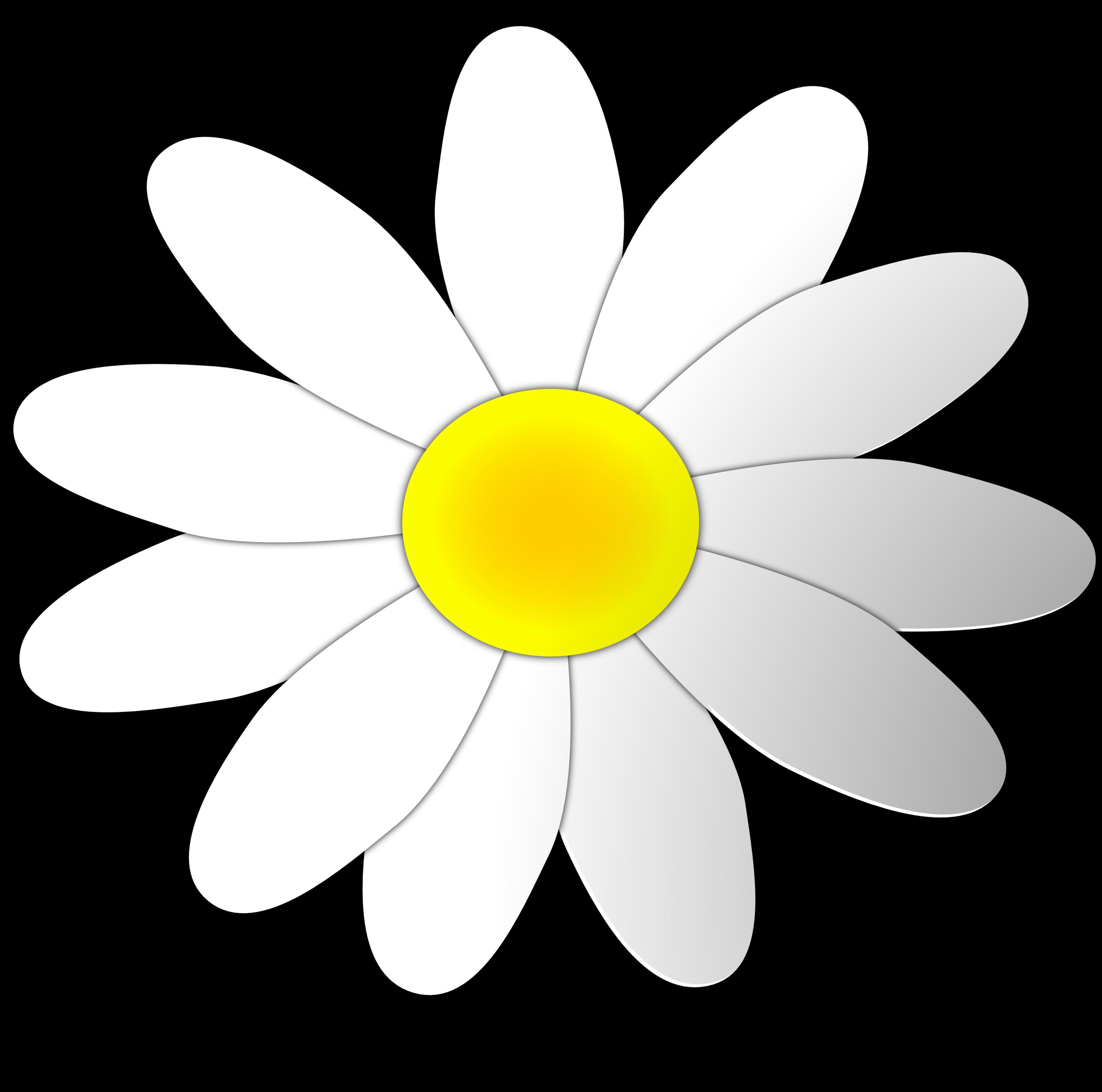 Daisy Flower Clipart. Valentine Daisy Fl-Daisy Flower Clipart. Valentine Daisy Flower 8 SVG-13