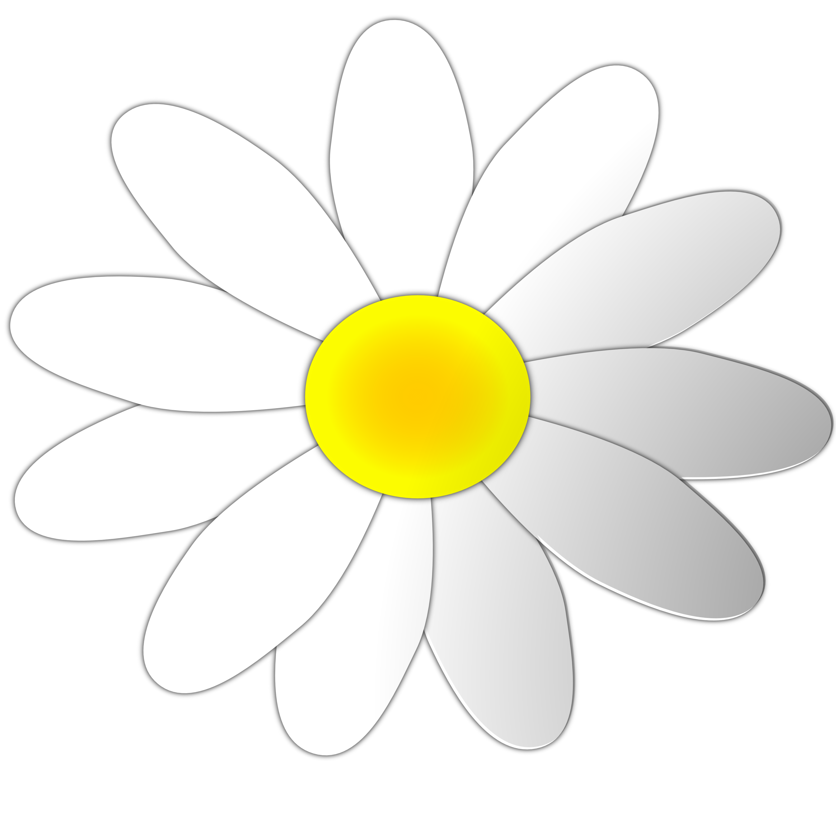 Daisy Flower Clipart. Valentine Daisy Flower 8 SVG