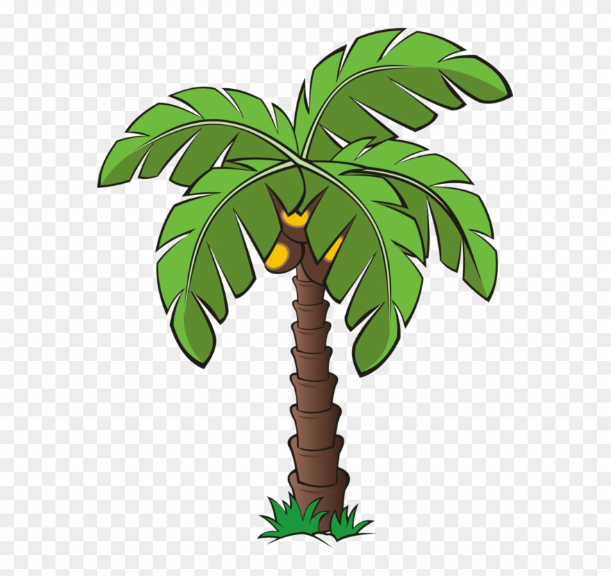 All Photo Png Clipart - Date Palm Tree Cartoon Transparent Png