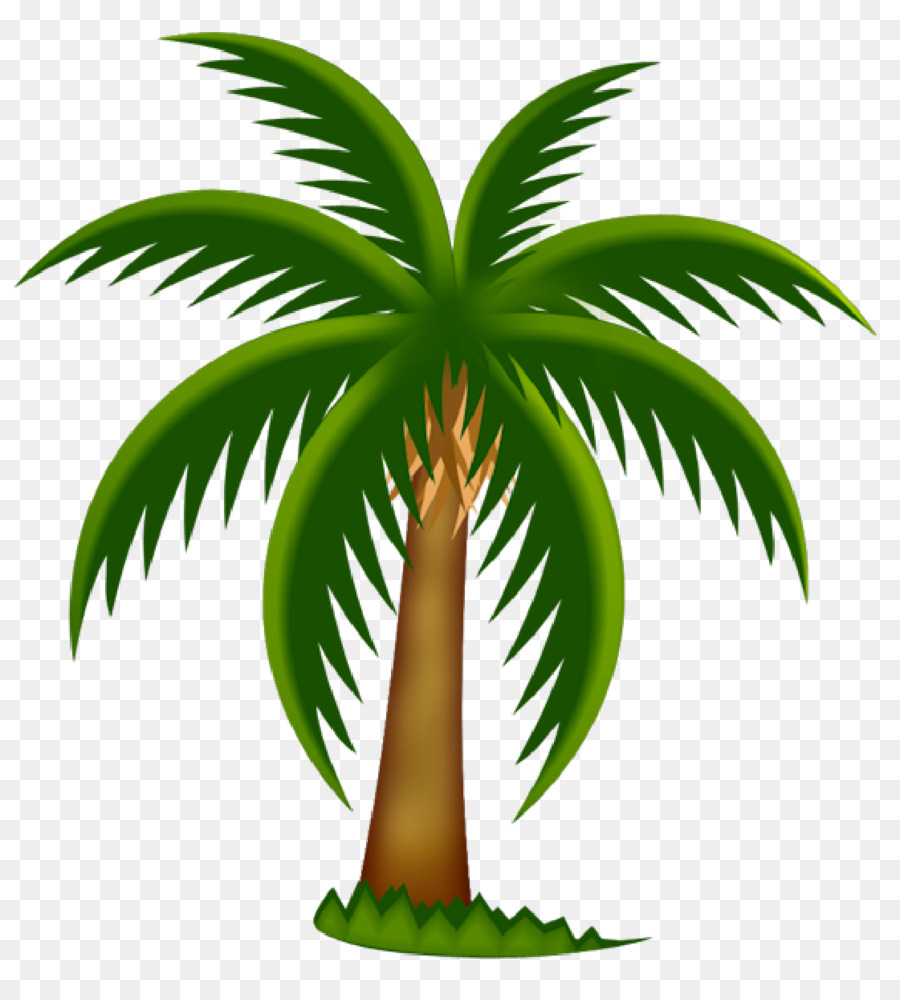 Arecaceae Date palm Tree Clip art - palm trees png download - 1121*1223 -  Free Transparent Arecaceae png Download.