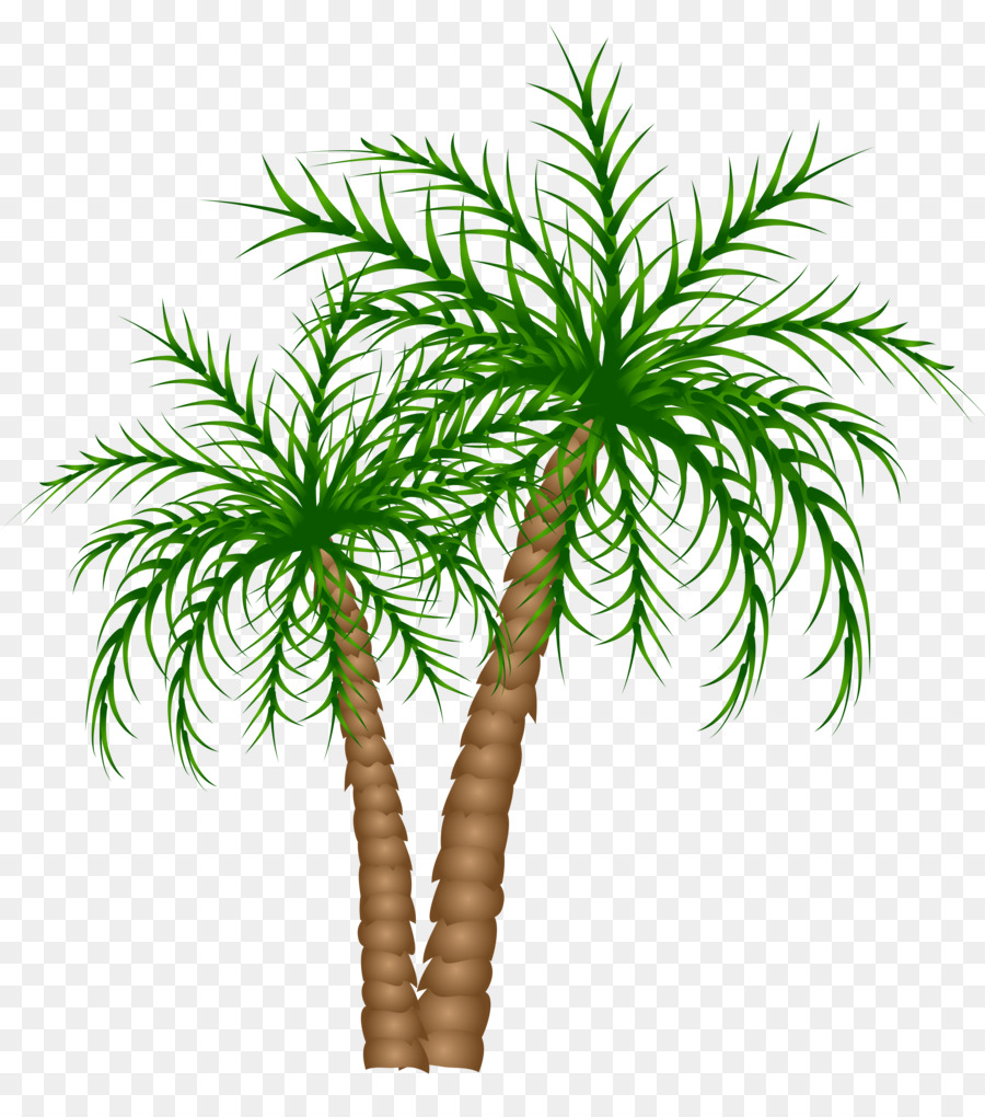 Arecaceae Tree Date palm Clip art - palm tree png download - 4991*5563 -  Free Transparent Arecaceae png Download.